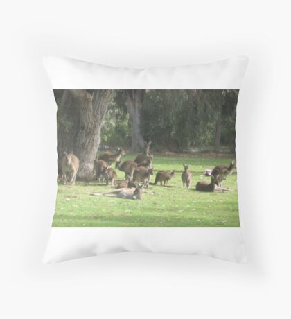 Group of Kangaroos Throw Pillow