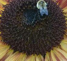 Sunflower Bee Sticker