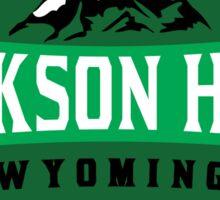 JACKSON HOLE WYOMING Mountain Skiing Ski Snowboard Snowboarding 5 Sticker