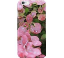 Pink Leavs On Bush iPhone Case/Skin