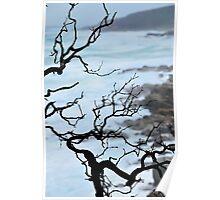 Zen Coastline Poster