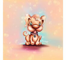 Cute Colorful Puppy Dog Photographic Print