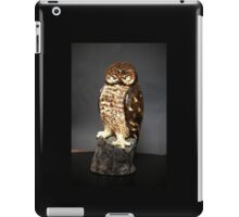 Owl Sculpture iPad Case/Skin