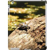 Cute Little Turtle  iPad Case/Skin