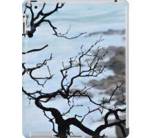 Zen Coastline iPad Case/Skin