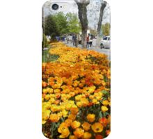 Yellow tulips iPhone Case/Skin