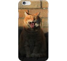 Ginger cat and shadow iPhone Case/Skin