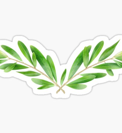 Two olive branches Sticker