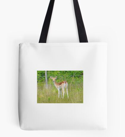 Bambie Lookalike Tote Bag