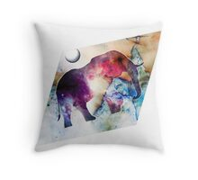 Psychedelic Star Ladder Throw Pillow