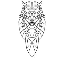 Geometric Owl Photographic Print
