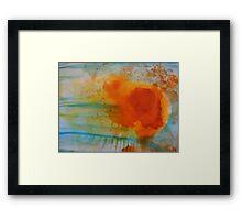 Summer Flame Blossom Framed Print