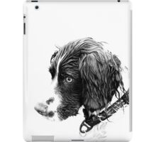 Springer iPad Case/Skin