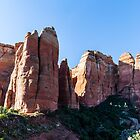 Cathedral Rock - South Face Of Saddle Area by eegibson