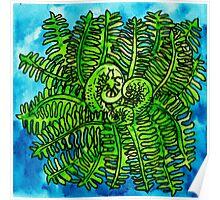 wild watercolor fern Poster