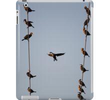 Cormorants at Twilight iPad Case/Skin