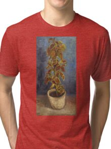 Vincent Van Gogh - Flame Nettle In A Flowerpot. Still life with flowers: blossom, nature, botanical, floral flora, wonderful flower, plants, cute plant for kitchen interior, garden, vase Tri-blend T-Shirt
