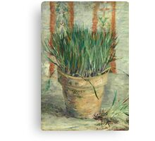 Vincent Van Gogh - Flowerpot With Garlic Chives. Still life with flowers: blossom, nature, botanical, floral flora, wonderful flower, plants, cute plant for kitchen interior, garden, vase Canvas Print