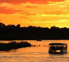Zambezi river sunset cruise by Dan MacKenzie