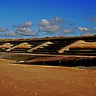 Sandy Shore... by shelleybabe2
