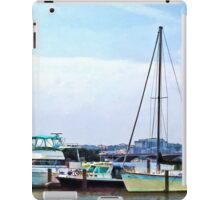 Boats on the Potomac Near Founders Park iPad Case/Skin