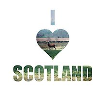 I Love Scotland by Louise Bichan