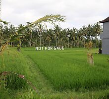Not For Sale. Ubud, Bali. by Keith Thomson