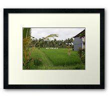 Not For Sale. Ubud, Bali. Framed Print