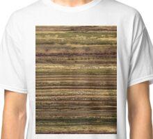 Brush #108 Classic T-Shirt