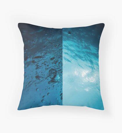Aquatica Throw Pillow