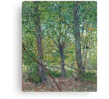 Vincent Van Gogh - Trees. Forest view: forest , trees,  fauna, nature, birds, animals, flora, flowers, plants, field, weekend Canvas Print