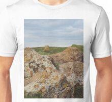 Burton Dassett Hills Unisex T-Shirt