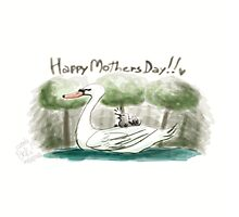 Swan Mother's Day Photographic Print