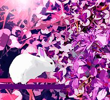white rabbit-pink clover by Ruud van Koningsbrugge