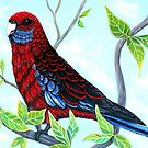 Rosella, Enjoying the View by Linda Callaghan