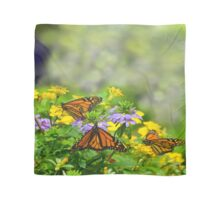 Inside the Butterfly House Scarf
