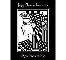 My Pharaohmones Are Irresistible Photographic Print