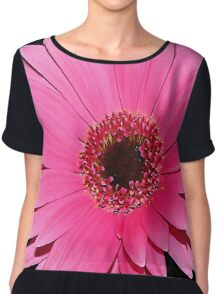 Floral Pink Beauty Chiffon Top