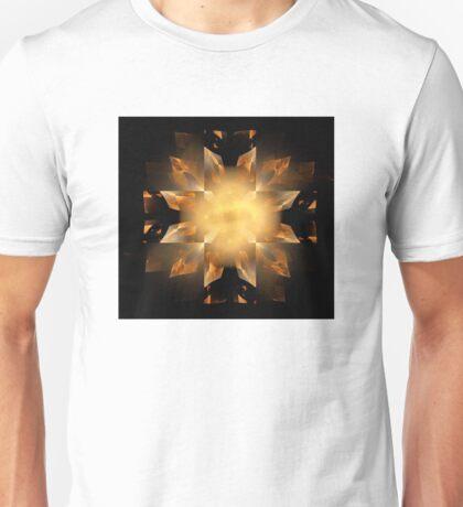 Shapes in Symmetry Unisex T-Shirt