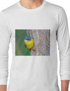 Eastern Yellow Robin Long Sleeve T-Shirt