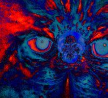 Eyes in the Dark Sticker