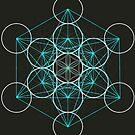 Merkaba Flower of Life by Shevaun  Shh!