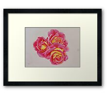 Pink and Yellow Roses Framed Print