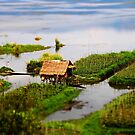 Traditional farming huts of Inle Lake by David McGilchrist