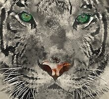 White Tiger Watercolor by TinaGraphics