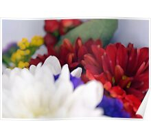 Watercolor style natural background with beautiful colorful flower petals. Poster