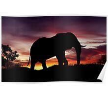 Elephant Africa Safari Sunset Scenery Poster