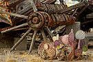 Nopal and Wagon Wheel by Larry3