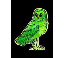 alien owl Photographic Print