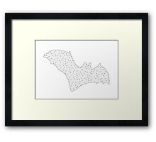 Bat Framed Print